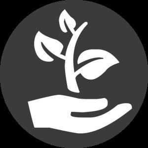 Ökologisch - Wakeparx